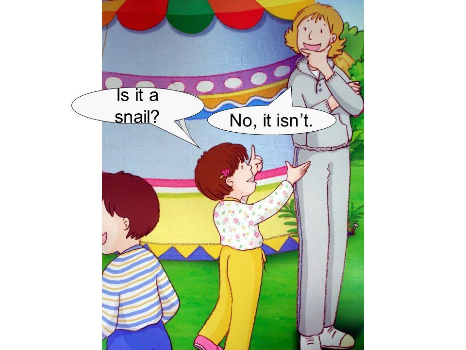 Is it a snail? No, it isn't.