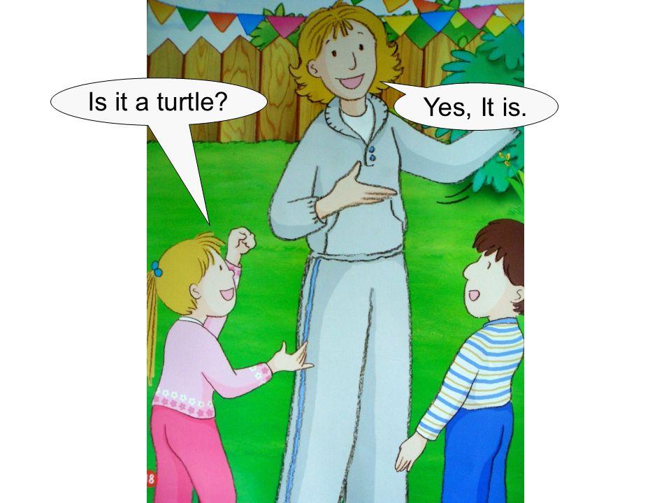 Is it a turtle? Yes, It is.
