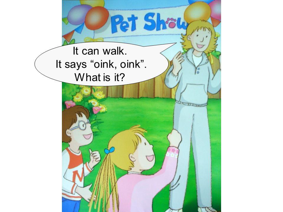 """It can walk. It says """"oink, oink"""". What is it?"""