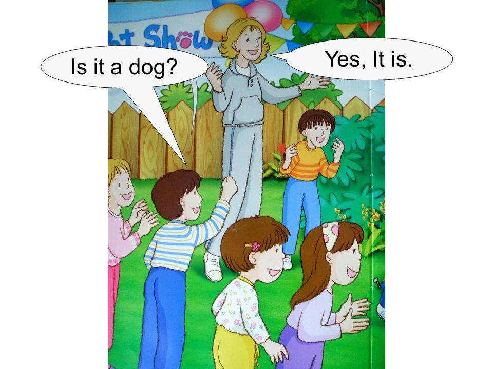 Is it a dog? Yes, It is.