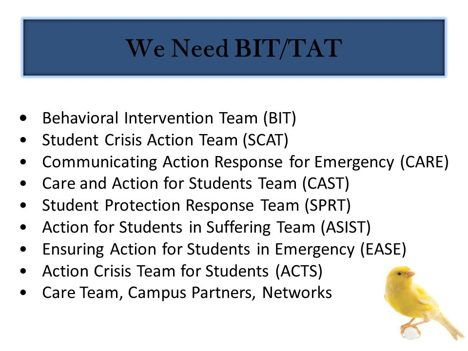 Behavioral Intervention Team (BIT) Student Crisis Action Team (SCAT) Communicating Action Response for Emergency (CARE) Care and Action for Students T
