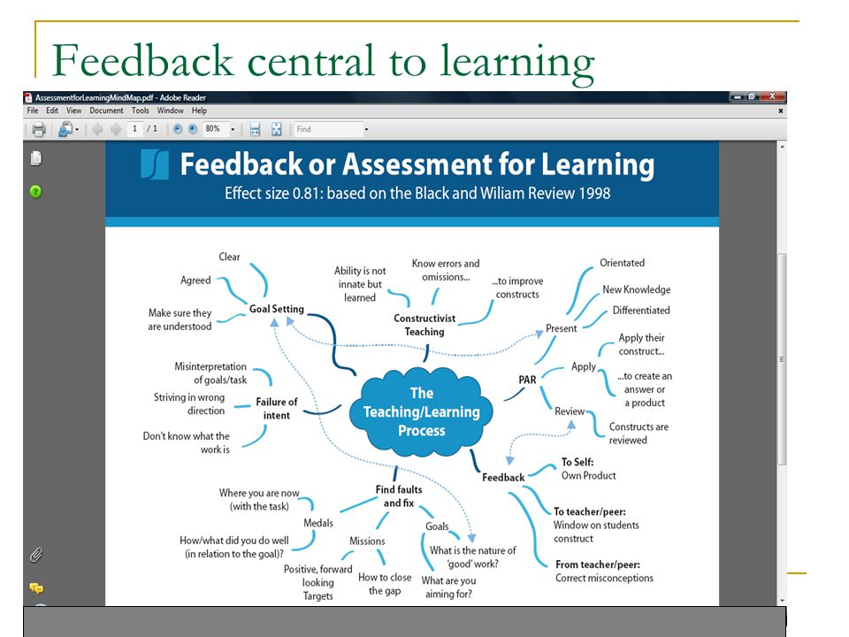 Feedback central to learning