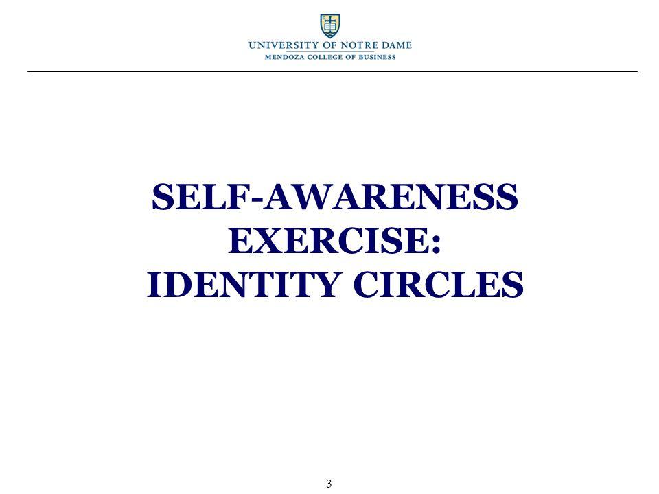 SELF-AWARENESS EXERCISE: IDENTITY CIRCLES 3