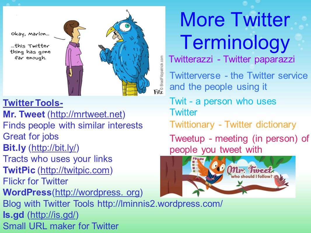 More Twitter Terminology Twitterazzi - Twitter paparazzi Twittionary - Twitter dictionary Tweetup - meeting (in person) of people you tweet with Twitterverse - the Twitter service and the people using it Twit - a person who uses Twitter Twitter Tools- Mr.