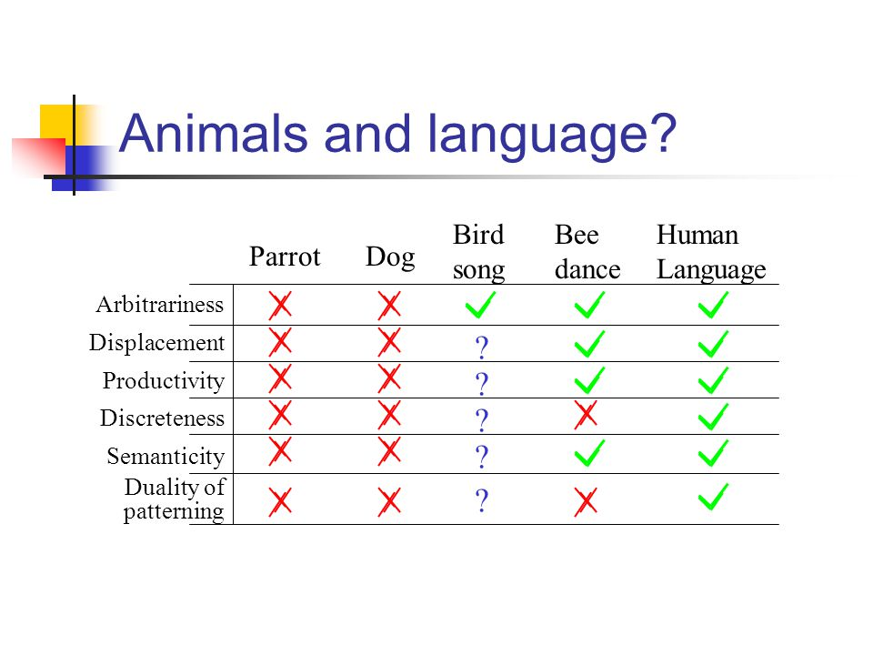 Animals and language.