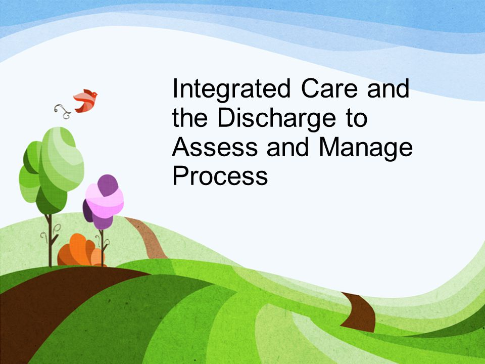 Integrated Care and the Discharge to Assess and Manage Process