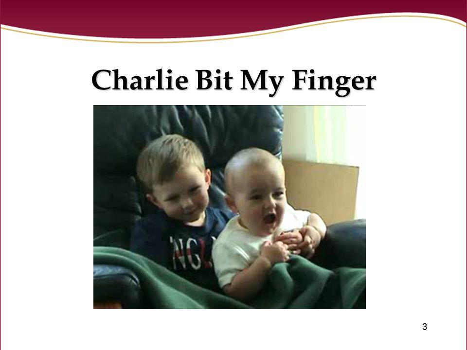 3 Charlie Bit My Finger