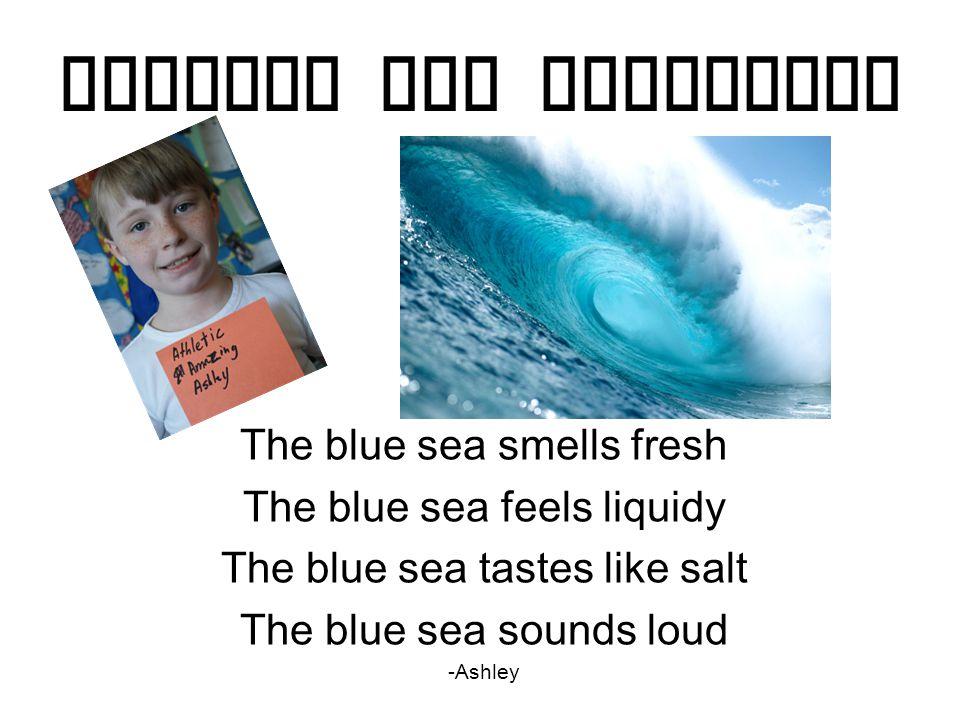 Similes and Metaphors The blue sea smells fresh The blue sea feels liquidy The blue sea tastes like salt The blue sea sounds loud -Ashley