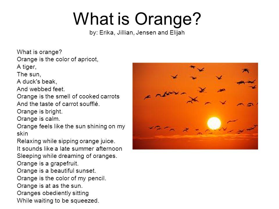 What is Orange. by: Erika, Jillian, Jensen and Elijah What is orange.