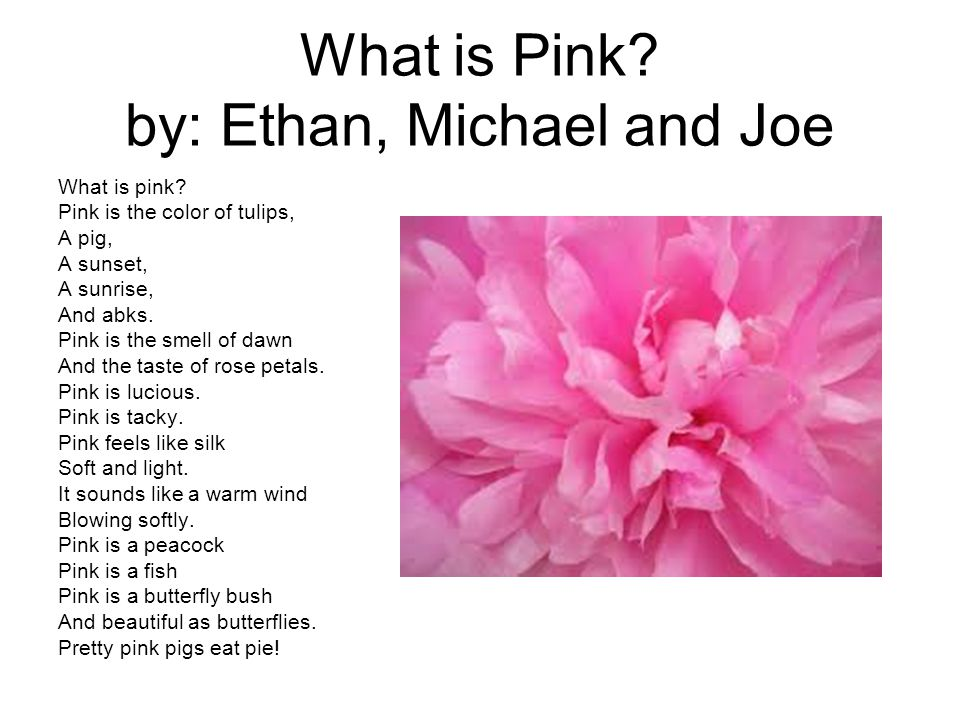 What is Pink. by: Ethan, Michael and Joe What is pink.
