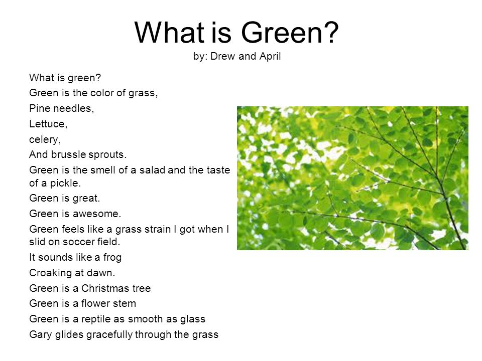 What is Green. by: Drew and April What is green.
