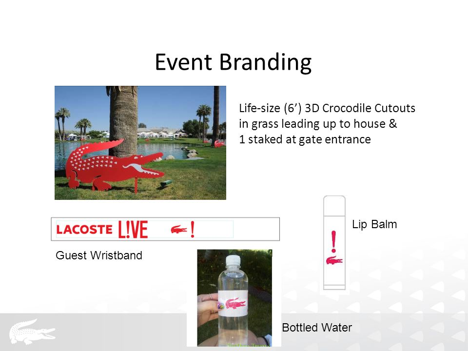 Life-size (6') 3D Crocodile Cutouts in grass leading up to house & 1 staked at gate entrance Guest Wristband Lip Balm Event Branding Bottled Water