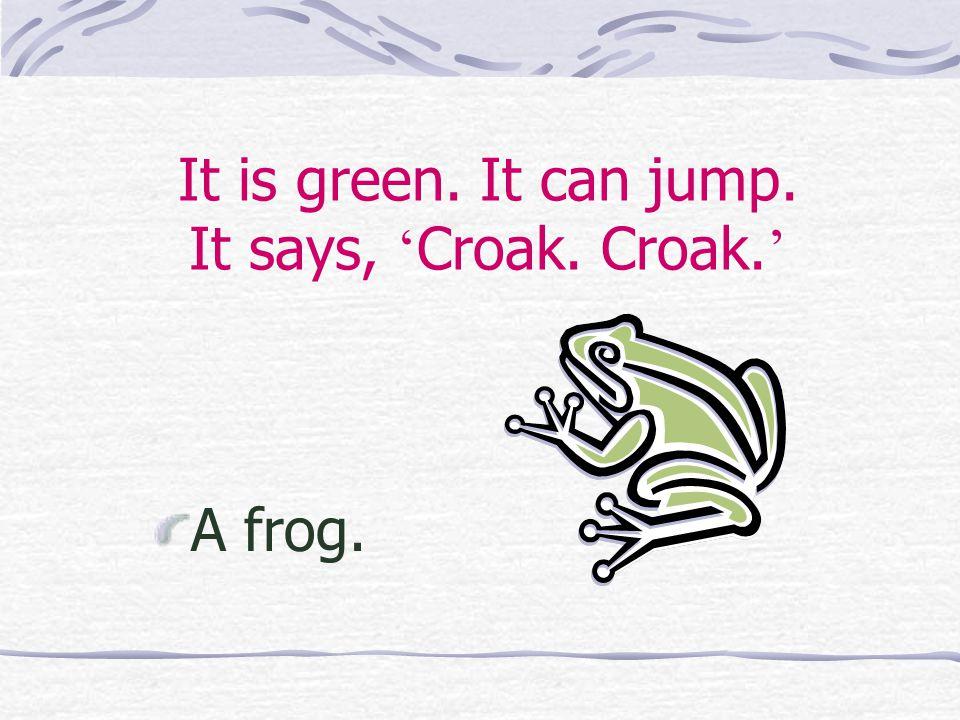 It is green. It can jump. It says, ' Croak. Croak. ' A frog.
