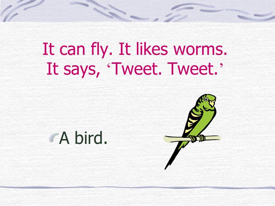 It can fly. It likes worms. It says, ' Tweet. Tweet. ' A bird.