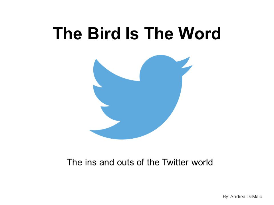 The Bird Is The Word The ins and outs of the Twitter world By: Andrea DeMaio