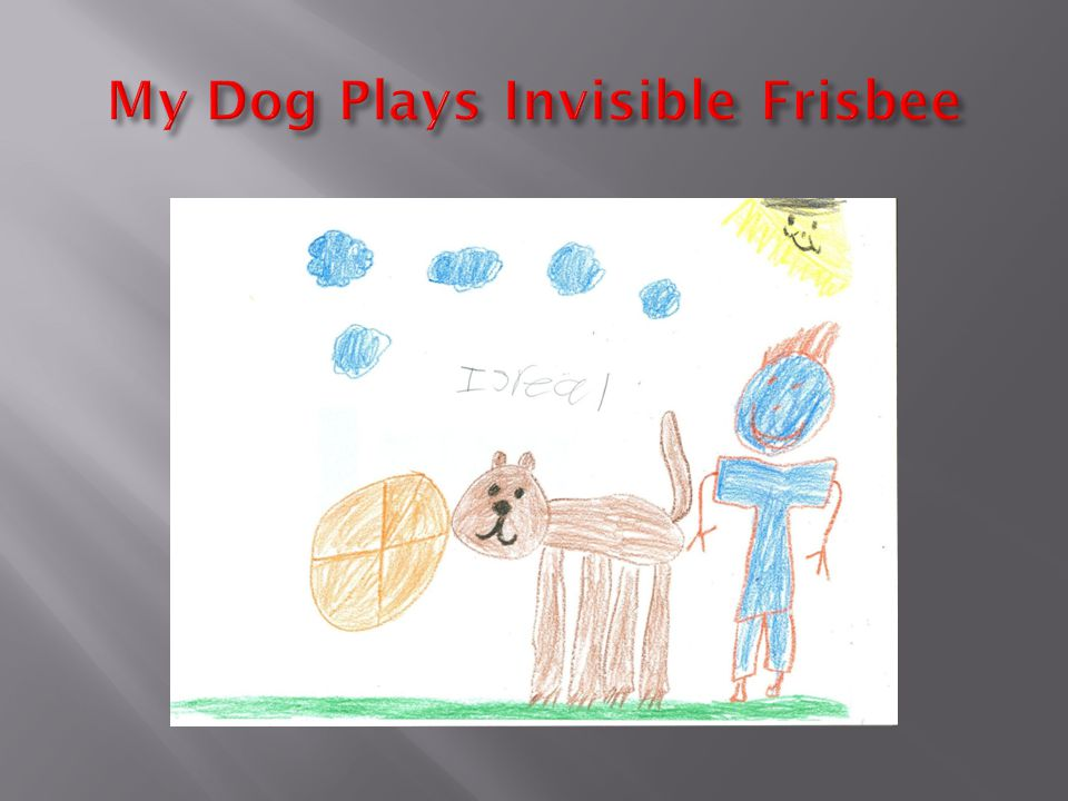  My Dog Plays Invisible Frisbee  My dog plays invisible Frisbee .He catches invisible balls.