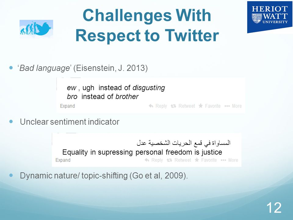 Challenges With Respect to Twitter 'Bad language' (Eisenstein, J.