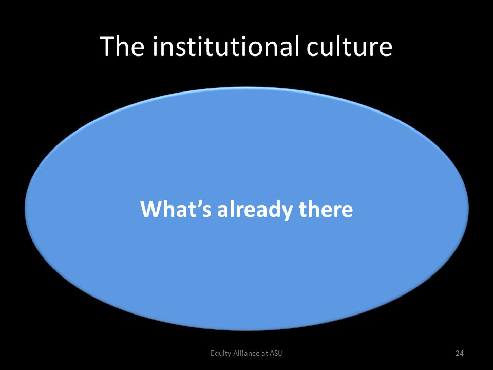 The institutional culture Equity Alliance at ASU24 What's already there