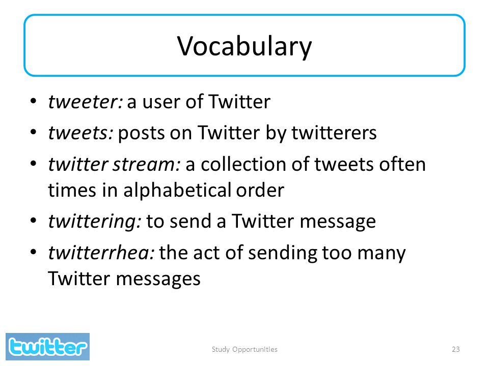 Vocabulary tweeter: a user of Twitter tweets: posts on Twitter by twitterers twitter stream: a collection of tweets often times in alphabetical order twittering: to send a Twitter message twitterrhea: the act of sending too many Twitter messages Study Opportunities23