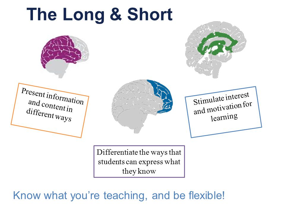 The Long & Short Present information and content in different ways Differentiate the ways that students can express what they know Stimulate interest and motivation for learning Know what you're teaching, and be flexible!