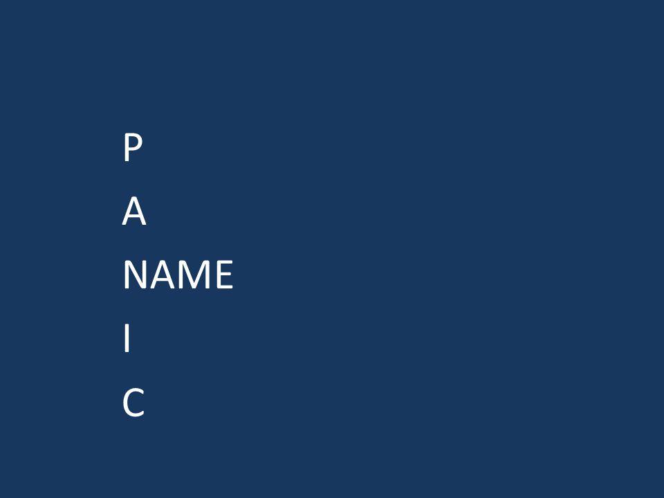 P A NAME I C