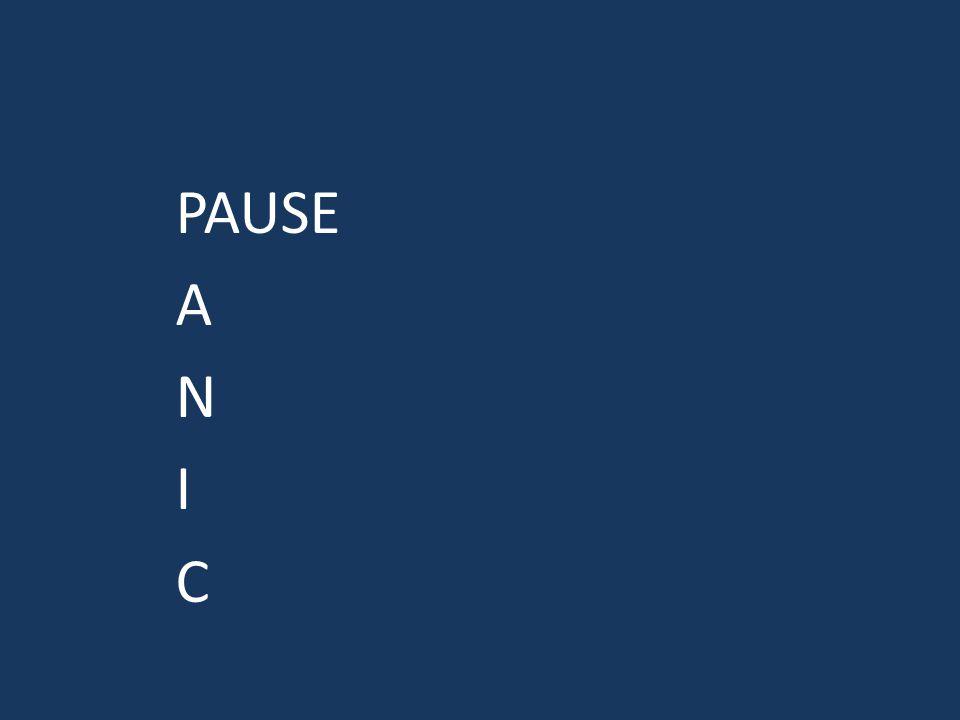 PAUSE A N I C