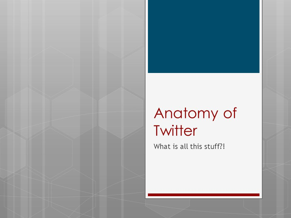Anatomy of Twitter What is all this stuff?!