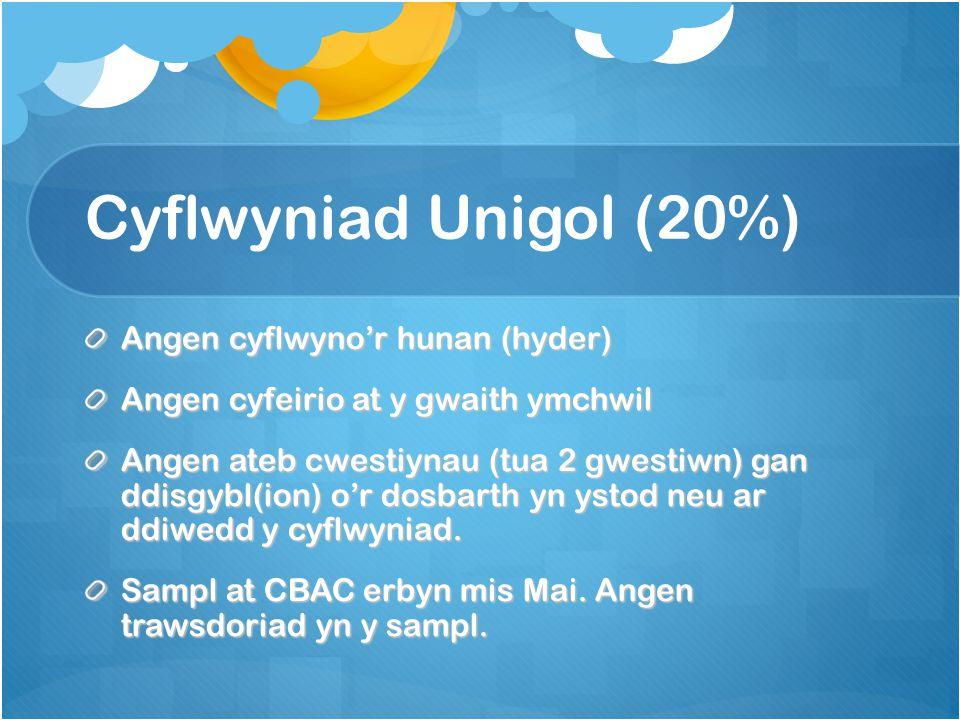 Cyflwyniad Unigol (20%) Angen cyflwyno'r hunan (hyder) Angen cyfeirio at y gwaith ymchwil Angen ateb cwestiynau (tua 2 gwestiwn) gan ddisgybl(ion) o'r dosbarth yn ystod neu ar ddiwedd y cyflwyniad.