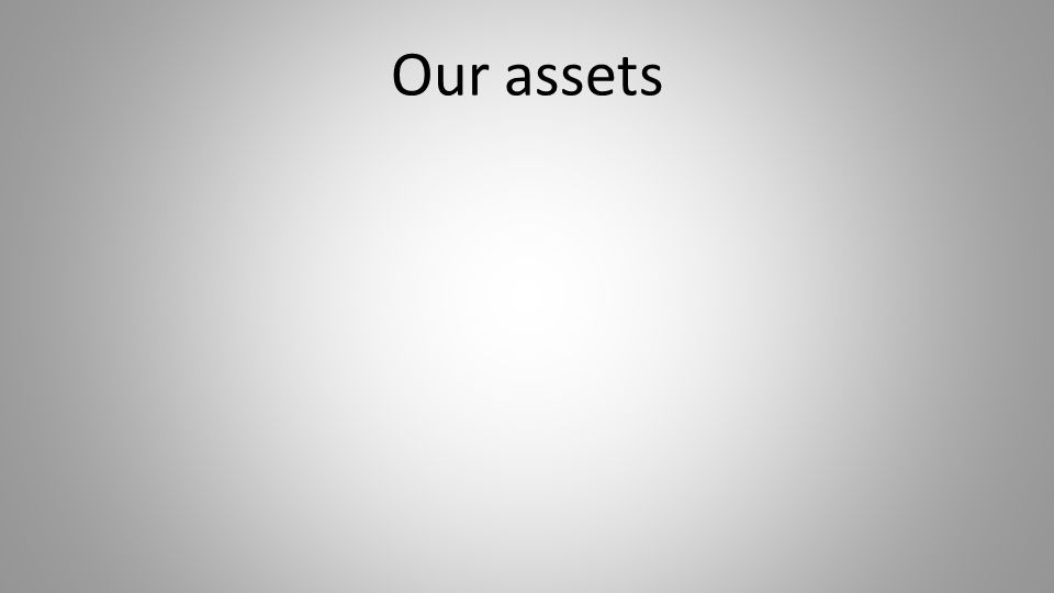 Our assets