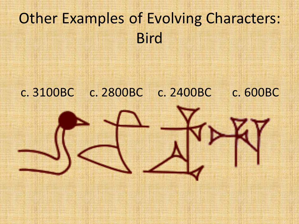 Other Examples of Evolving Characters: Bird c. 3100BC c. 2800BC c. 2400BC c. 600BC