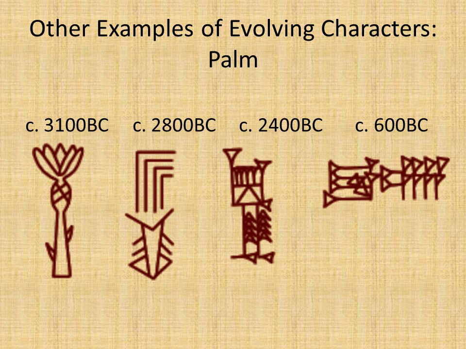 Other Examples of Evolving Characters: Palm c. 3100BC c. 2800BC c. 2400BC c. 600BC