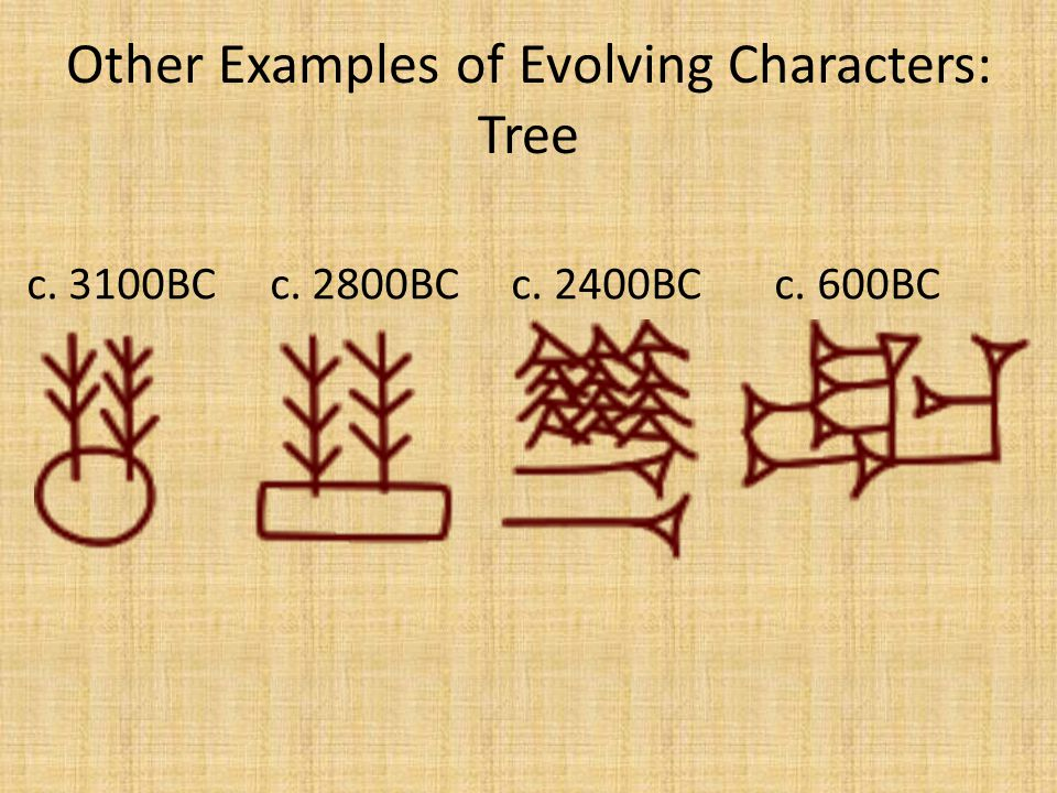 Other Examples of Evolving Characters: Tree c. 3100BC c. 2800BC c. 2400BC c. 600BC