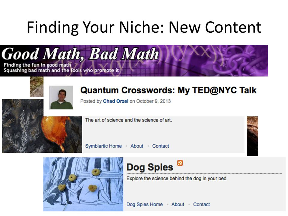 Finding Your Niche: New Content