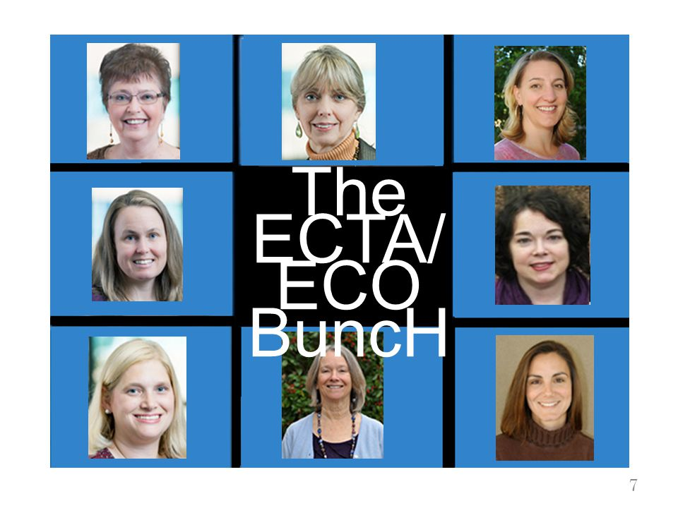 7 The ECTA/ ECO BuncH