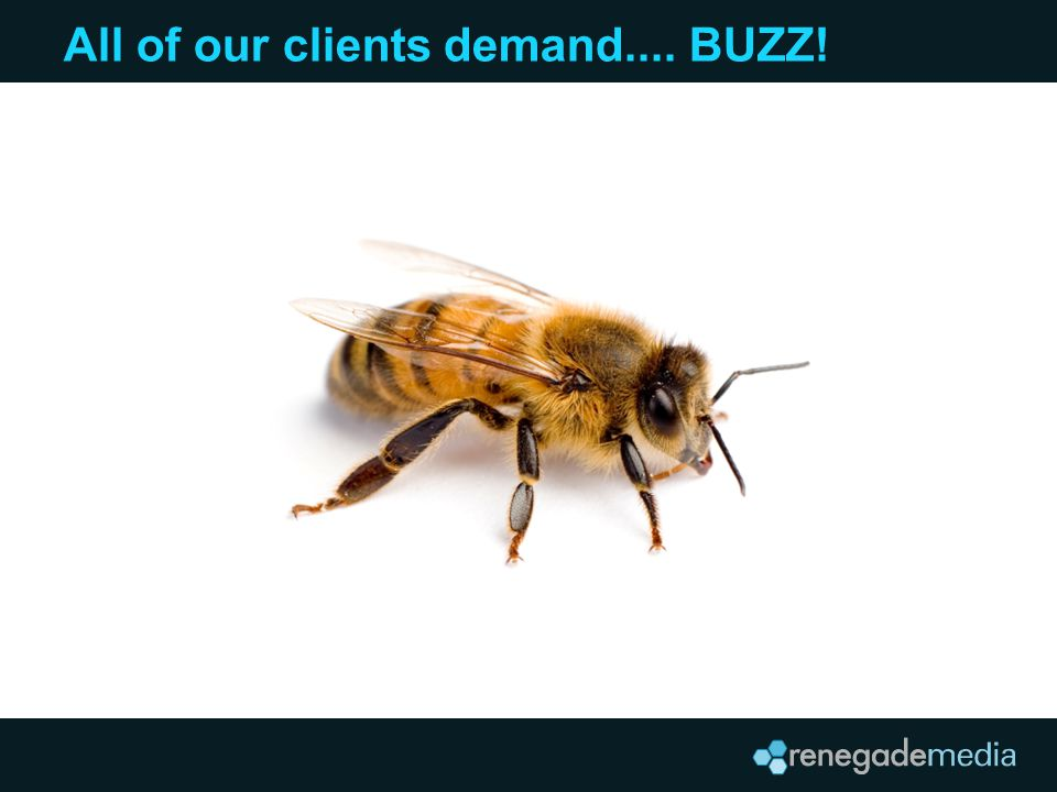 All of our clients demand.... BUZZ!