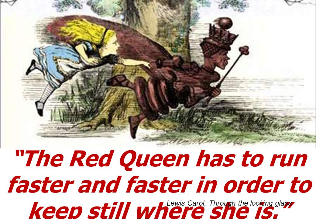 The Red Queen has to run faster and faster in order to keep still where she is. Lewis Carol, Through the looking glass