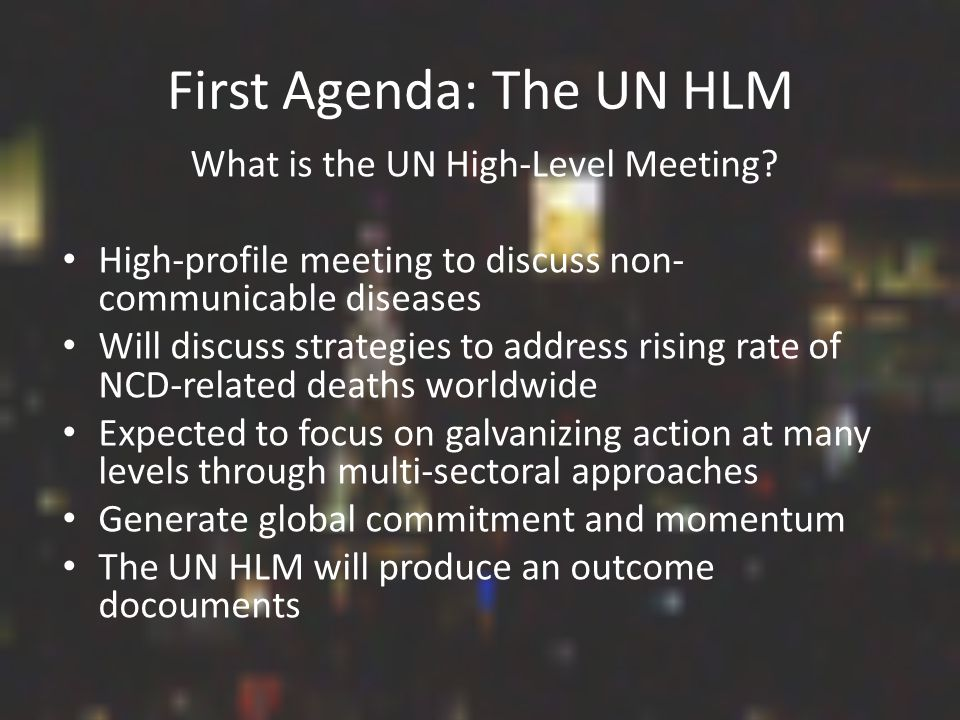 First Agenda: The UN HLM What is the UN High-Level Meeting.