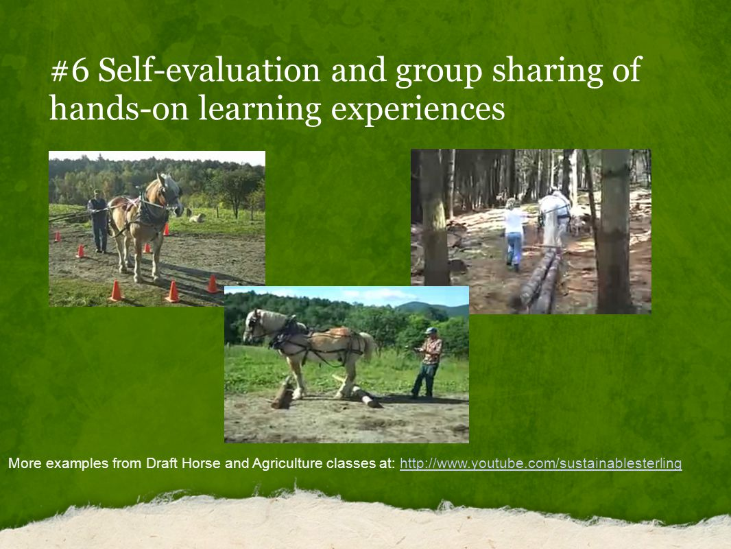 #6 Self-evaluation and group sharing of hands-on learning experiences More examples from Draft Horse and Agriculture classes at: http://www.youtube.com/sustainablesterlinghttp://www.youtube.com/sustainablesterling
