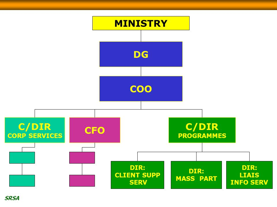 SRSA C/DIR PROGRAMMES DIR: CLIENT SUPP SERV DIR: MASS PART DIR: LIAIS INFO SERV C/DIR CORP SERVICES CFO COO DG MINISTRY