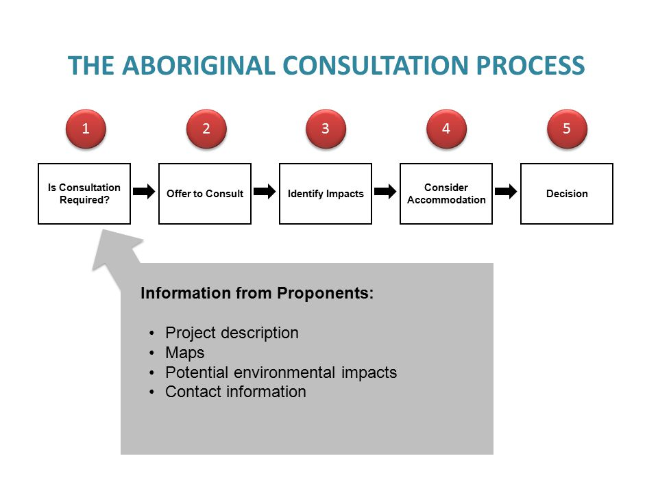 CONSULTATION SCREENING CRITERIA Project description (location, size, duration) Operational phases (construction, operation) Regulatory schedule (approvals and deadlines) Land ownership and description Potential environmental impacts Potential impacts on Aboriginal and treaty rights Distance of project to First Nation lands Archaeology Specific Claims Interest expressed in land Jurisdictional issues (eg.