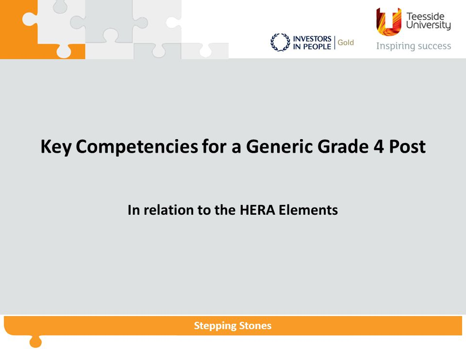 Stepping StonesStepping Stones Programme Stepping Stones Key Competencies for a Generic Grade 4 Post In relation to the HERA Elements
