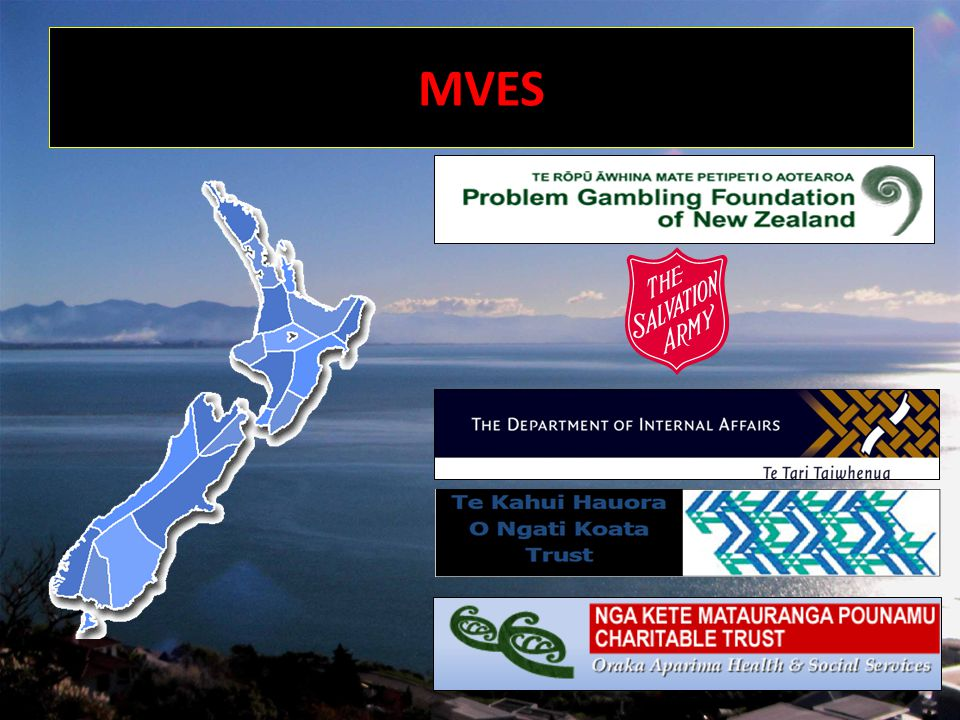 Initial Consultation: Request by DIA to takeover SkyCity Class 4 MVE Process - Dec10 DIA meeting with Societies re SkyCity MVE Project and potential Auckland MVE - Feb11 Met with Auckland Service Providers re SkyCity and potential Auckland MVE - Feb11 Develop process and forms for SkyCity MVE Process - Feb/Mar MVE Collective Working Group meetings - develop consistency in process/forms Feb/Apr Meeting to confirm the provider/s for Auckland MVE Coordination Service - April Auckland MVECS