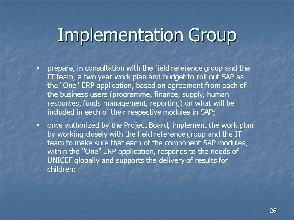 25 Implementation Group  prepare, in consultation with the field reference group and the IT team, a two year work plan and budget to roll out SAP as
