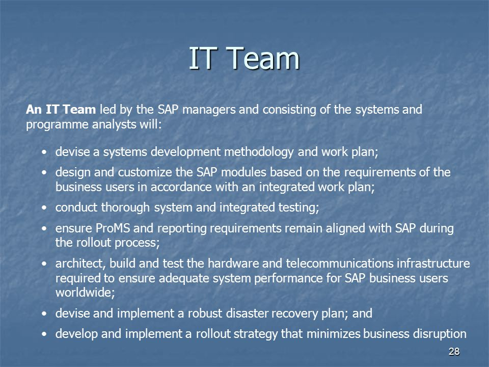 28 IT Team An IT Team led by the SAP managers and consisting of the systems and programme analysts will: devise a systems development methodology and