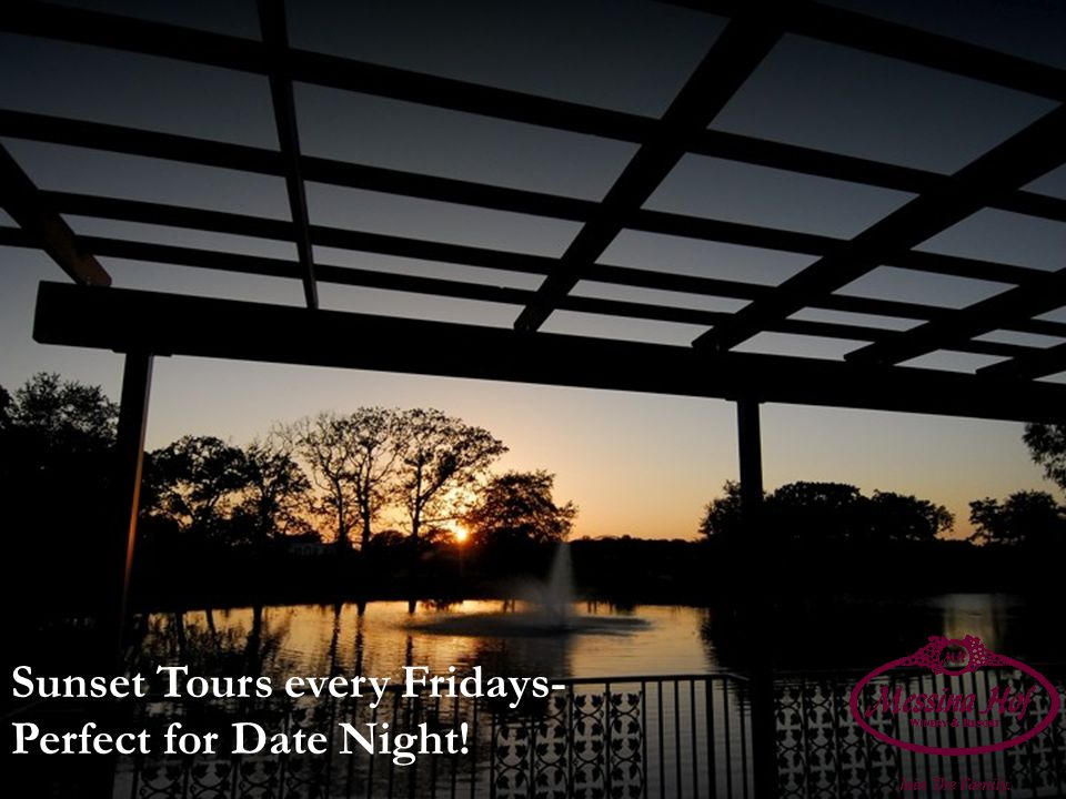 Sunset Tours every Fridays- Perfect for Date Night!