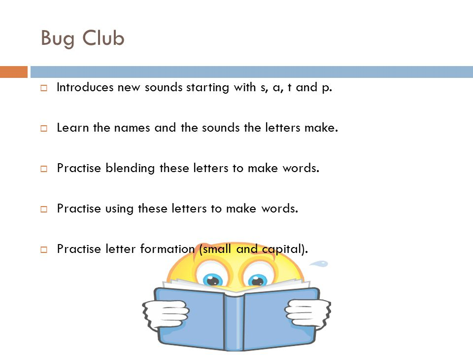 Bug Club  Introduces new sounds starting with s, a, t and p.