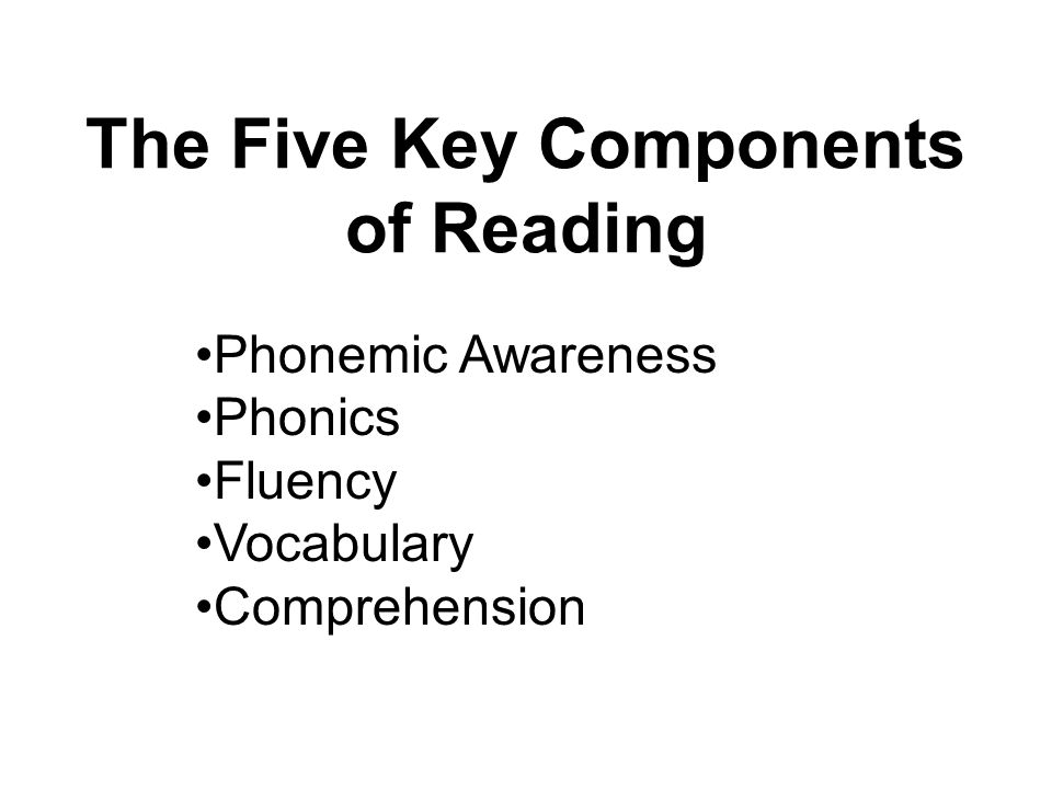 The Five Key Components of Reading Phonemic Awareness Phonics Fluency Vocabulary Comprehension