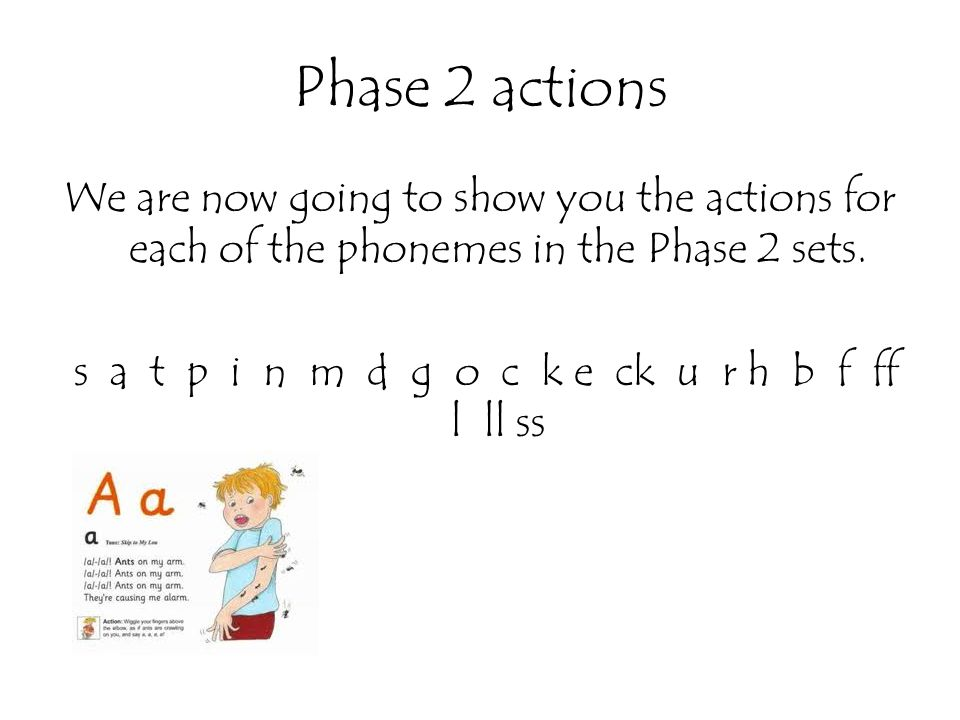 Phase 2 actions We are now going to show you the actions for each of the phonemes in the Phase 2 sets. s a t p i n m d g o c k e ck u r h b f ff l ll