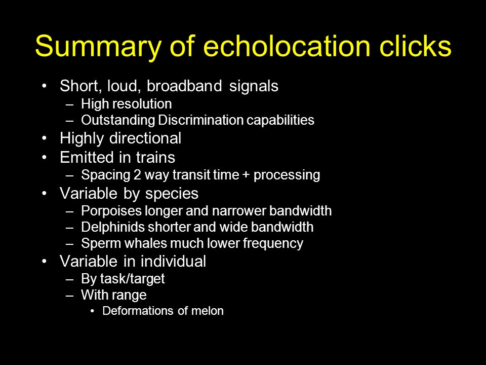 Summary of echolocation clicks Short, loud, broadband signals –High resolution –Outstanding Discrimination capabilities Highly directional Emitted in