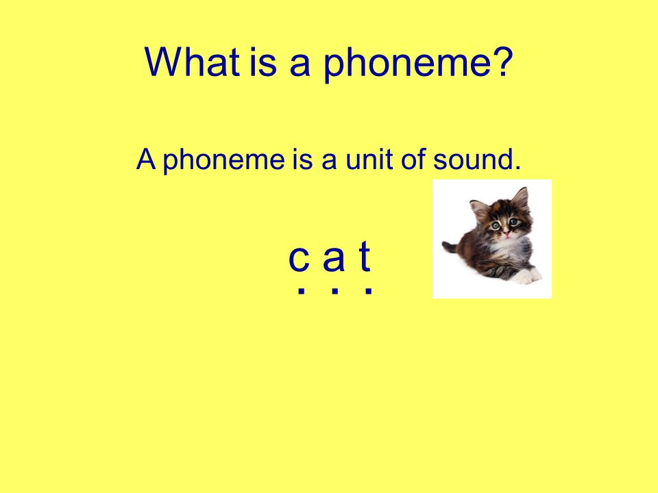 Phase 2 Is the start of systematic phonic work.